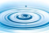 Metis Gaia y el Centro de Competencias del Agua: Gestión integral, eficiente y sostenible; La Huella Hídrica.