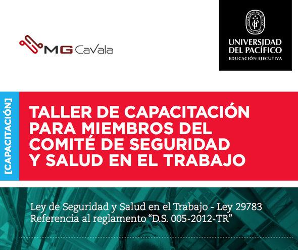 Taller de capacitación para miembros del comité de seguridad y salud en el trabajo por MG-CAVALA