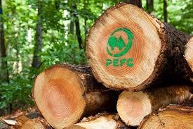 Lanzamiento del Generador de Logos PEFC