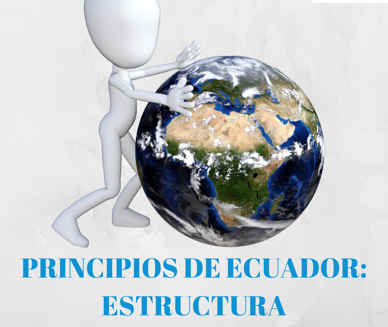 PRINCIPIOS DE ECUADOR: ESTRUCTURA