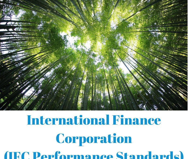 IFC PERFORMANCE STANDARDS