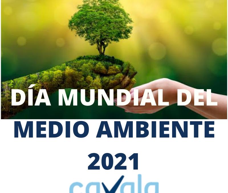 Restauración de ecosistemas para 2030 Día Mundial del Medio Ambiente